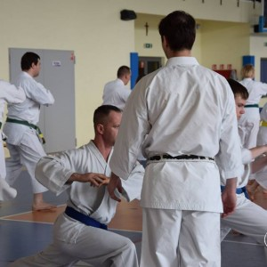 Seminarium z Sensei Alex Chichvarin 6 Dan KWF