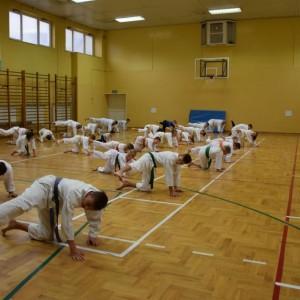Trening kadry
