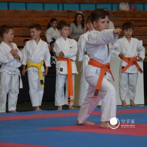 Open Karate Tournament