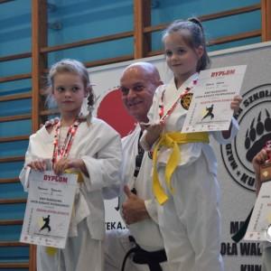 Open Karate Tournament